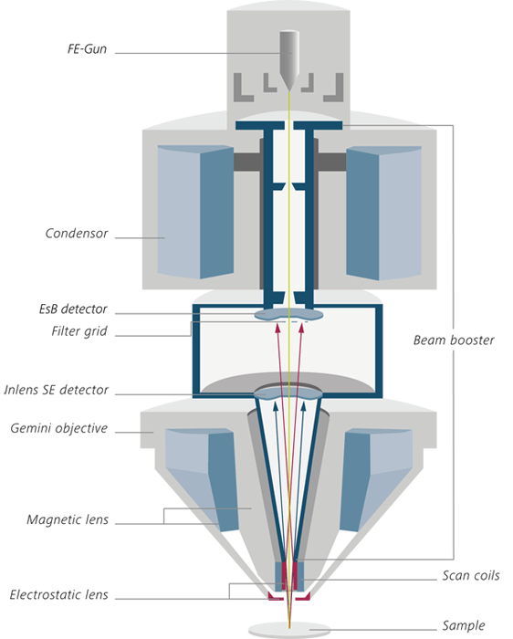 The Gemini optical column consists a beam booster, Inlens detectors and a Gemini objective