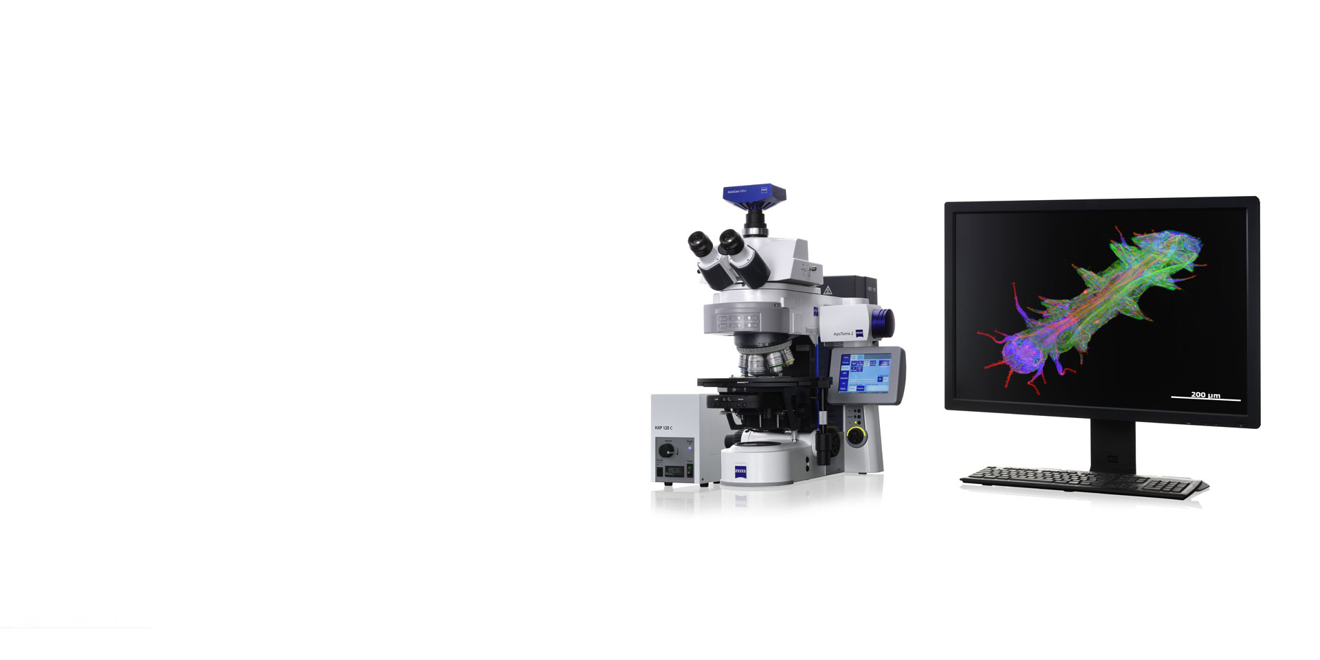 Axio Imager 2 Bio for Neuroscience, Molecular Genetics