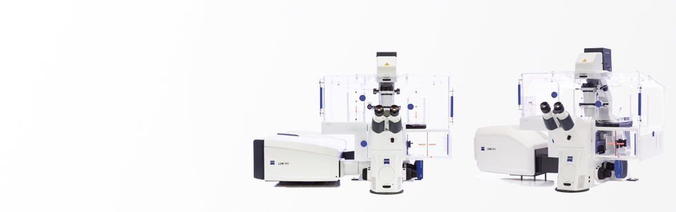Overview of upright and inverted light microscopes