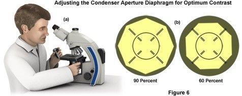 Adjusting the Condenser Aperture Diaphragm