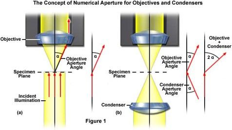 Concept of Numerical Aperture for Objectives and Condensers