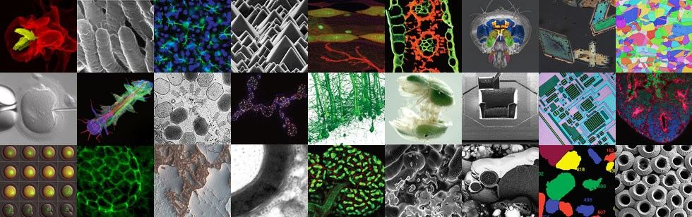 Overview of biosciences, materials and industry application images