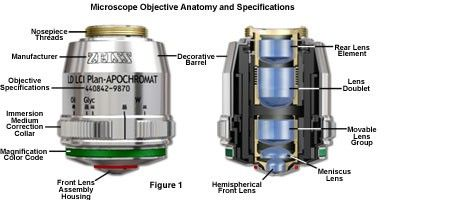 Microscope Objective Anatomy and Specifications