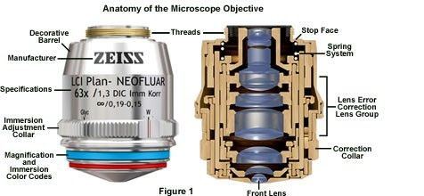 Anatomy of the Microscope Objective